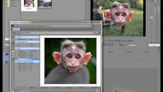 Sony Vegas 18. Замена лица в видео. (Troll Face)(Сегодня, в интернете все чаще можно увидеть картинки с заменой лица на картинки-тролли. Однако, данный «Troll-Fa..., 2013-02-16T14:27:49.000Z)