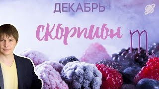 СКОРПИОН декабрь гороскоп
