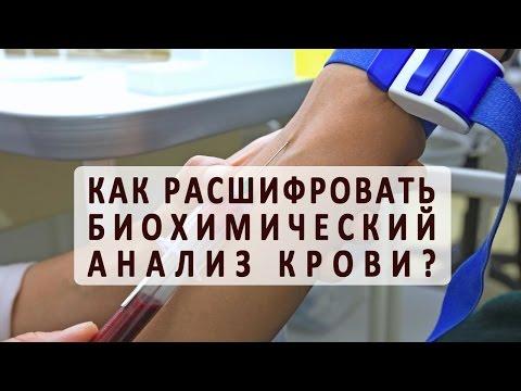 АСТ анализ крови и АЛТ: расшифровка и рекомендации для