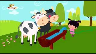 Küçük Lola  -  Baby Tv