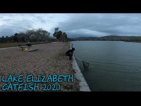 Lake Elizabeth | Catfish 2020