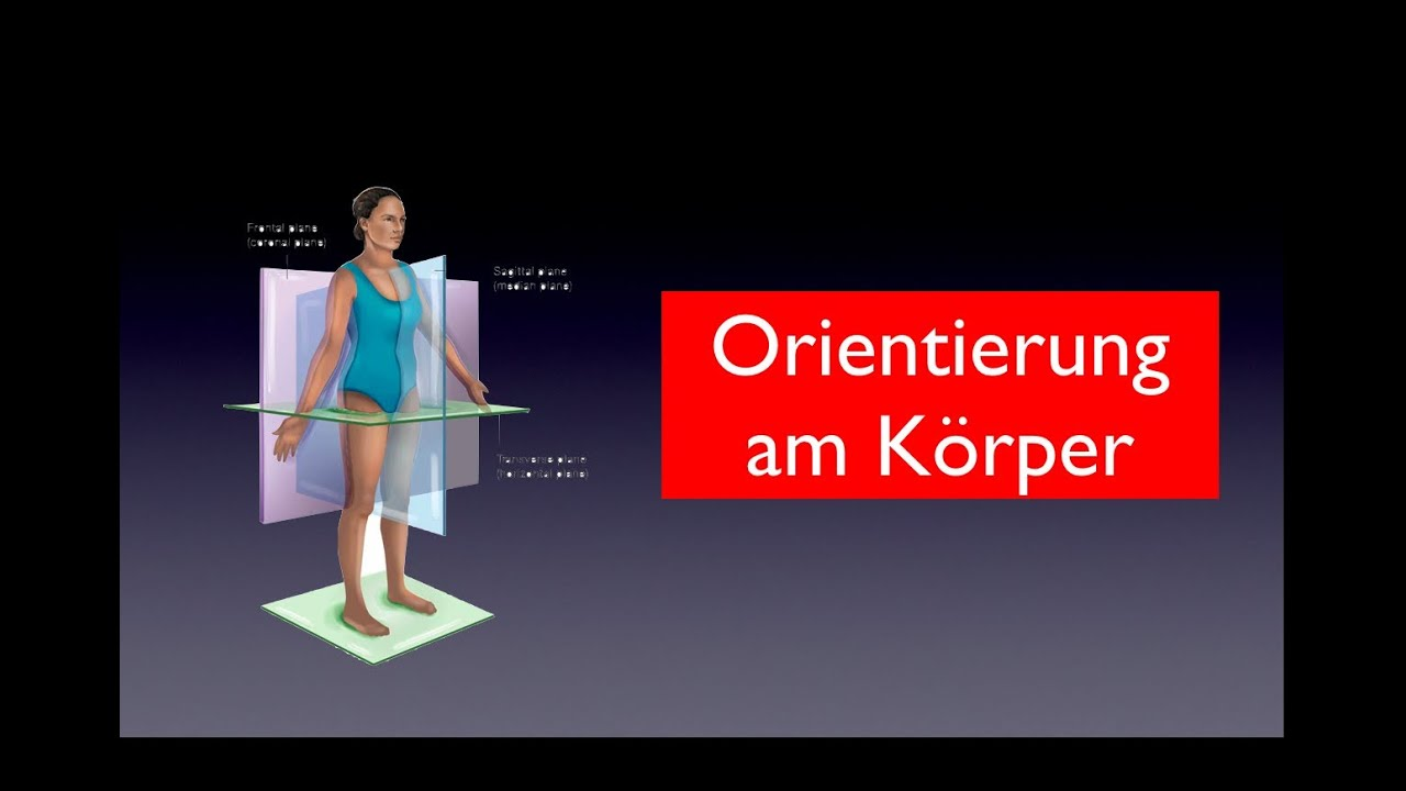 Orientierung am Körper - YouTube