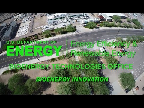 Bioenergy Innovation