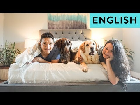 A day in our life (English)