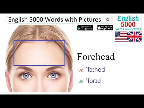 Learn English Vocabulary, English 5000 Words With Pictures