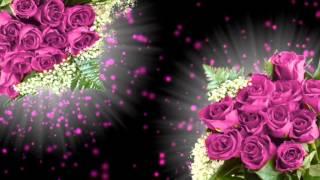 Футаж цветы Produce 15 Proshow Producer Free, слайд шоу, слайд программа