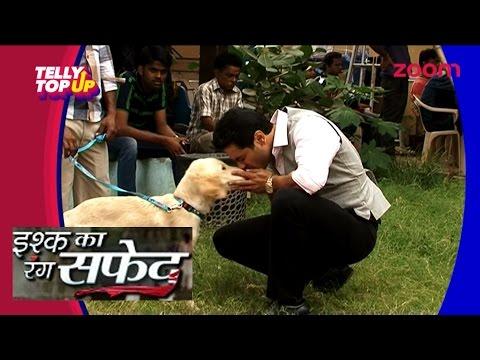Viplav Aka Mishal Raheja's Love For Animal   #TellyTopUp