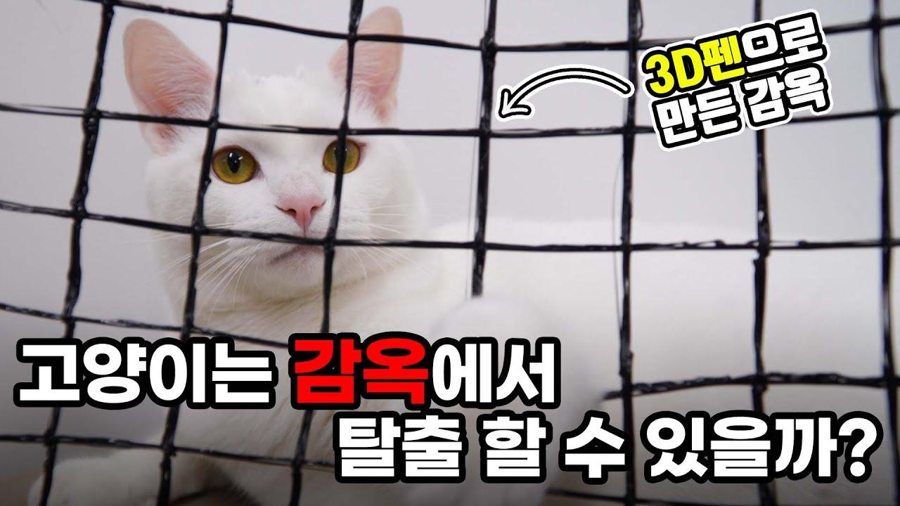 3D 펜으로 고양이감옥 만들기!! 【산냥고 Ep.03】   고양이산책