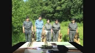 ППС уфа Соколов Кинологи!или организованная полицейская группировка