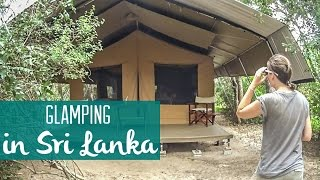 Glamping in Sri Lanka: Check out our tent!