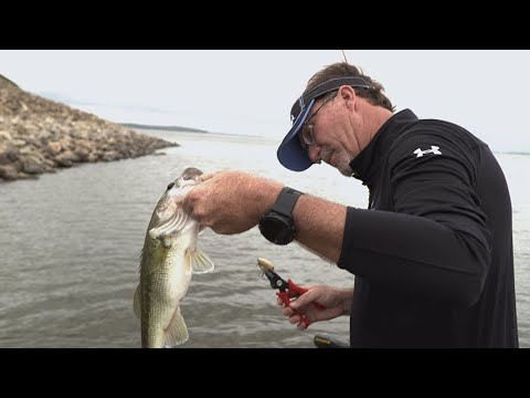 bass-fishing-secrets-from-the-pros