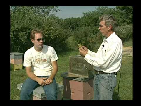 NJ Dept of Agricultural Feature on Beekeeping (from 2009)