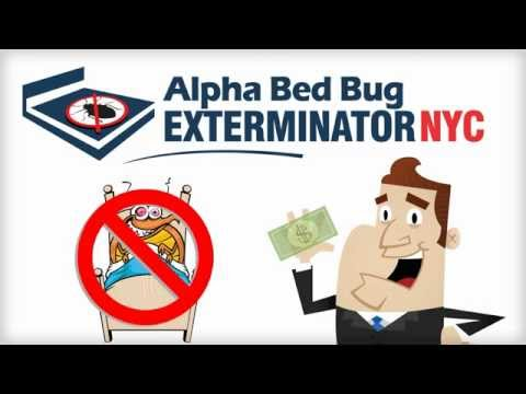 1 Bed Bug Exterminator In Alphabet City Nyc Treatment Control Removal