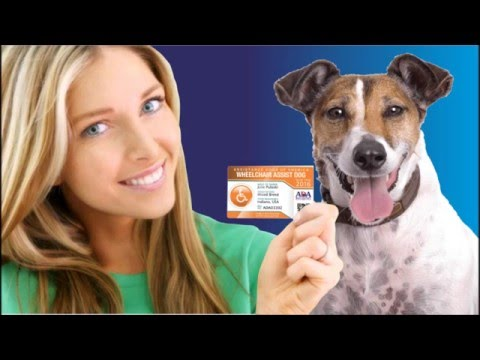 ADA SERVICE DOG REGISTRY VIDEO