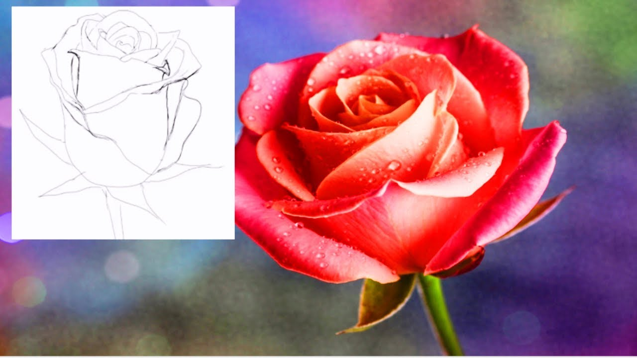 Как нарисовать ЦВЕТЫ КАРАНДАШОМ! Учимся рисовать ЦВЕТЫ Простым Карандашом! Как Научиться РИСОВАТЬ