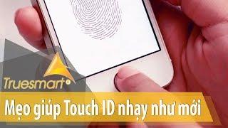iPhone home button fingerprint repair