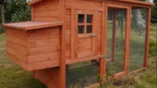 Diy Chicken Coop Plans For Building A Chicken Coop