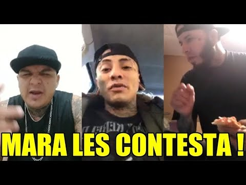 MARA CONTESTA A SIRAK MENDOZA & BIG DOG | MUSICRAPHOOD