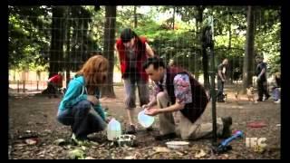 Dog Park - Portlandia