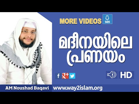 Noushad baqavi wife sexual dysfunction