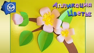 Аппликация весна Цветы яблони из Бумаги