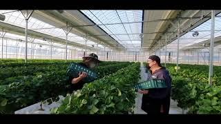 [40주년 독자이벤트 특별상] 미래의 농업농촌