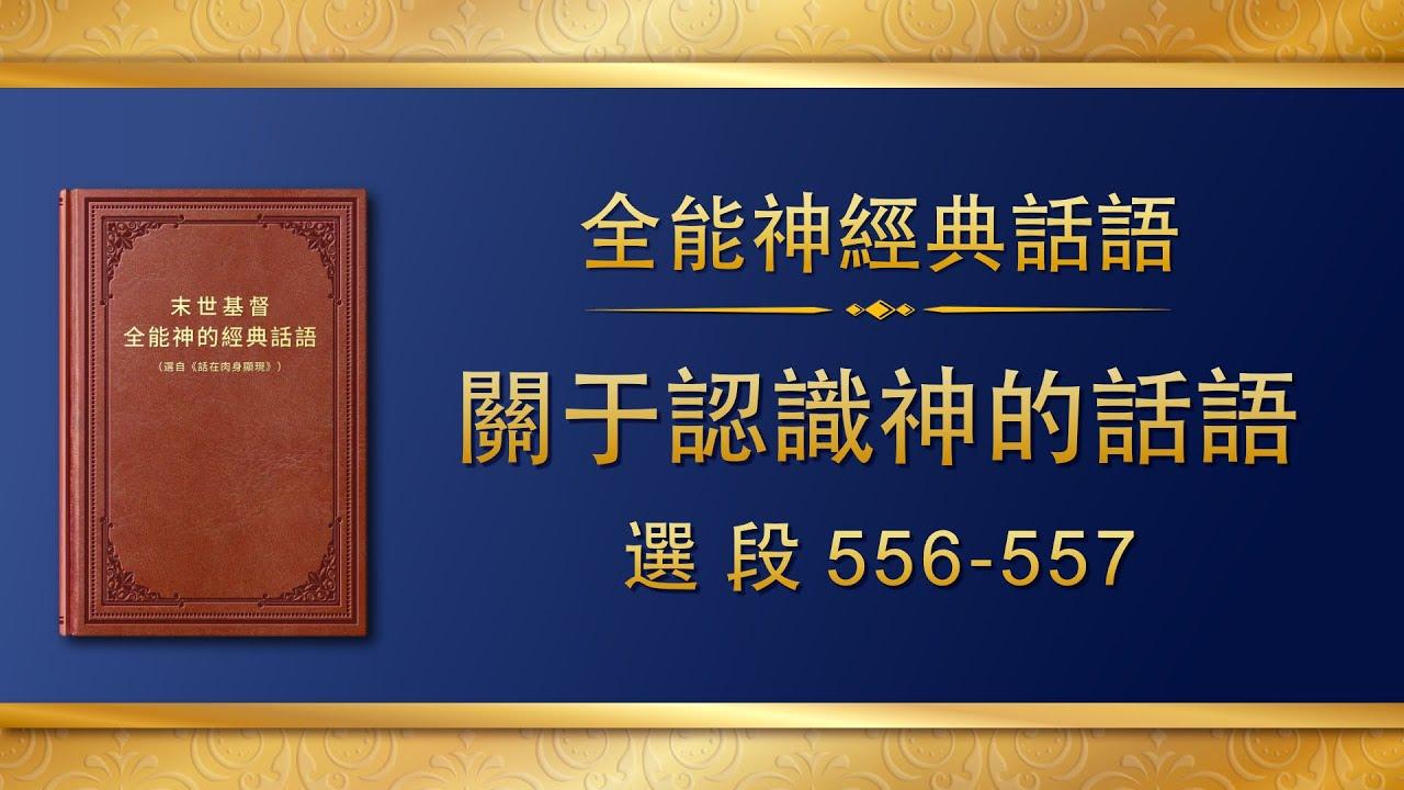 全能神经典话语《关于认识神的话语》选段556-557