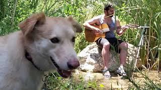 שיר בעיפרון בית הבובות - גיטרה וטבע | NatuRaz