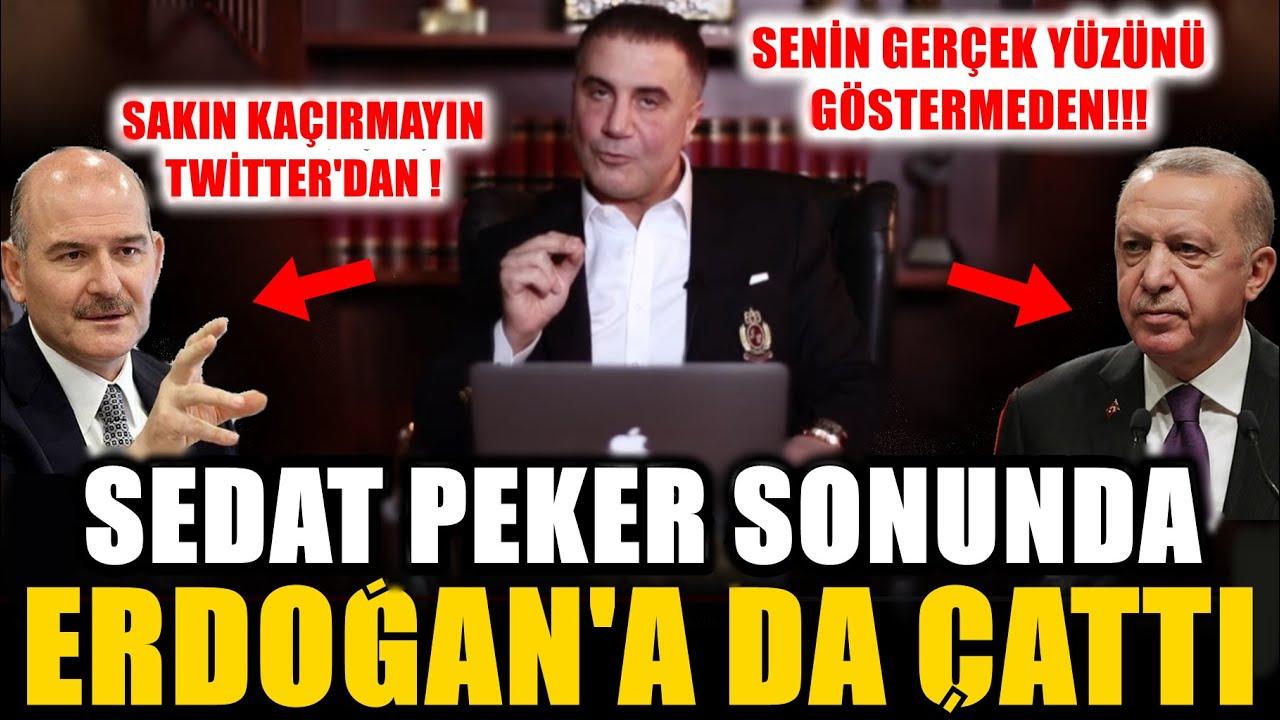 """Şok! Sedat Peker Sonunda Erdoğan'a Da Çattı Sakın Kaçırmayın! """"Hasta... Çay Dağıtılır Mı!"""" (Tw)"""