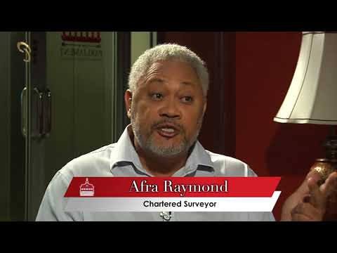 Throwing Light on the Constitution - Constitutional Considerations with Afra Raymond