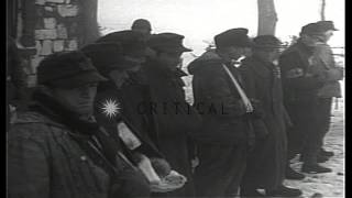 United States 2nd Division troops bring wounded German prisoners and interrogate ...HD Stock Footage