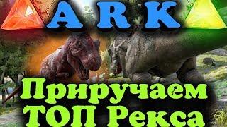 Корм для РЕКСА - ARK: Survival Evolved Как приручить самого сильного рекса
