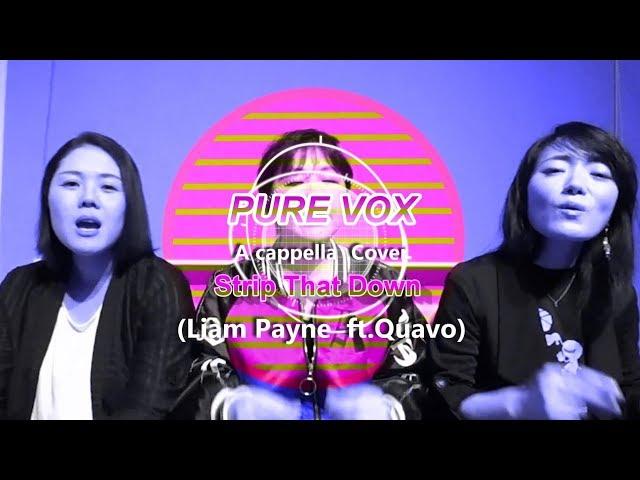 【洋楽カバー アカペラ】Liam Payne  ft. Quavo - Strip That Down