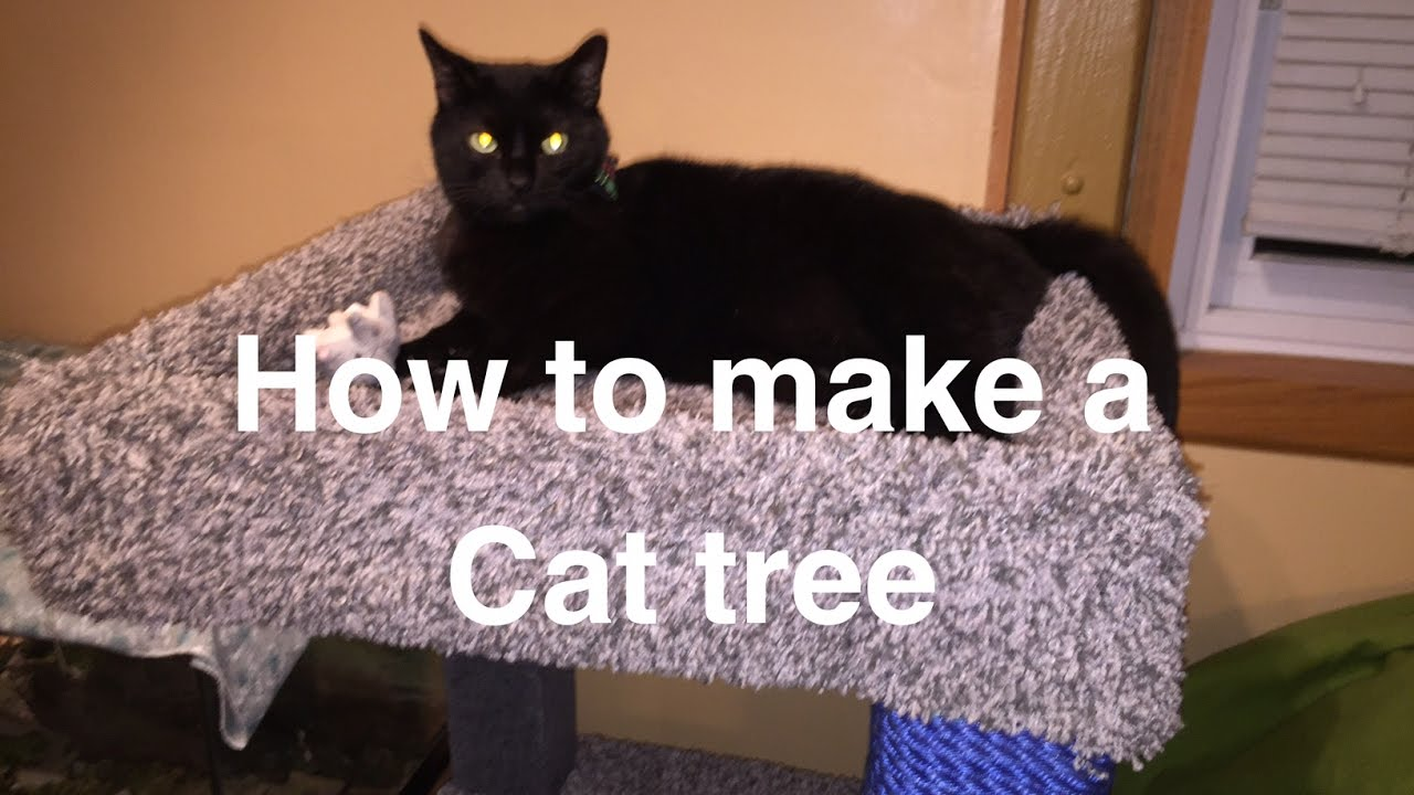 build your own cat tree youtube. Black Bedroom Furniture Sets. Home Design Ideas