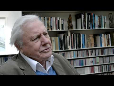 Sir David Attenborough | Biology: Changing the World Interview | Royal Society of Biology