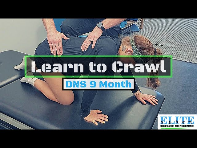 DNS 9 Month Crawling Exercise   Chesterfield Chiropractor