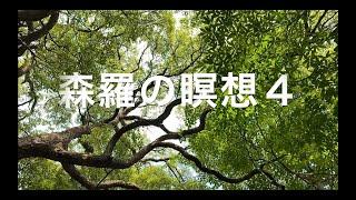 <森羅の瞑想4> ピアノ & 映像 by ウォンウィンツァン(90/9/28札幌パームホール)#癒やし #ヒーリング #リラクゼーション #マインドフルネス #BGM #環境音楽
