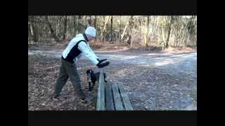 Trail Running & Fascia Training