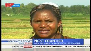 Next frontier : Modern rice farming