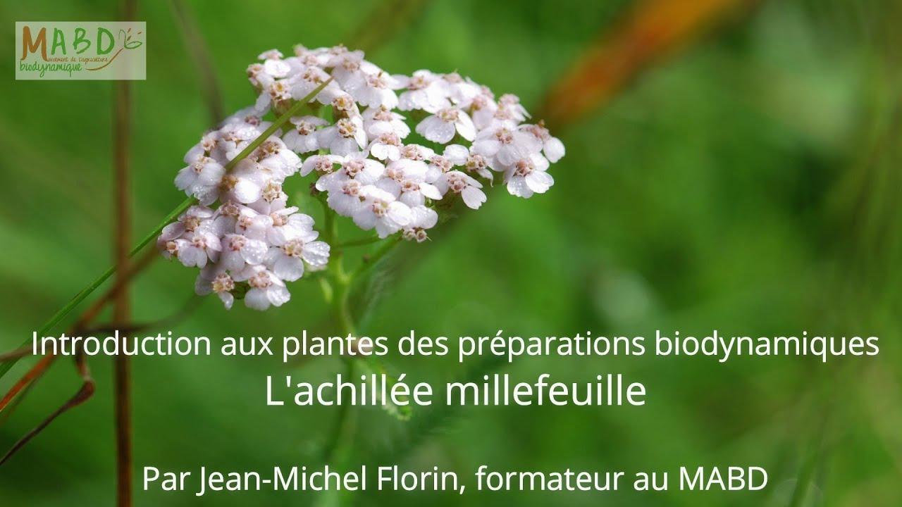 Presentation De La Biodynamie Mabd