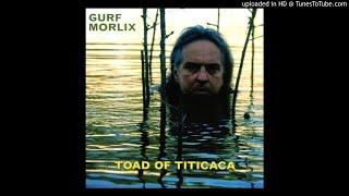Gurf Morlix - Rainin' On Me