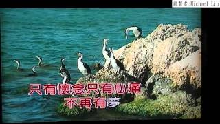 104年8月28日Michael Liu演唱:夢似浪花愛像風 (含字幕)(720P)
