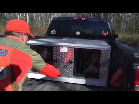 U.P. Grouse Hunting