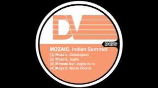 Mozaic - Galapagaus - Indian Summer EP