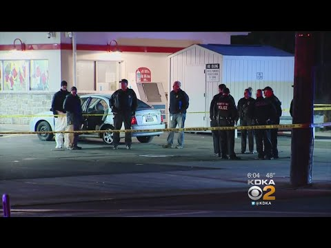 2 Killed In Shooting At Ambridge Gas Station, 4 Facing Charges