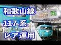 【レア運用】和歌山線の117系に乗ってきた。