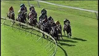 Vidéo de la course PMU BLINKERS BAR MAIDEN PLATE (F & M)