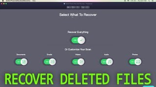 You Can Recover Deleted Photos & Files with This Software! (Stellar Phoenix Mac Data Recovery)