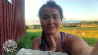 A little farm house in Sweden, sunset, bright nights, drone flights, Europe on the road Journal, cyc