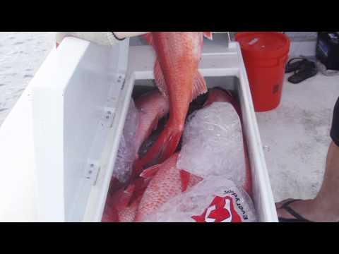 Onaga Fishing Guam